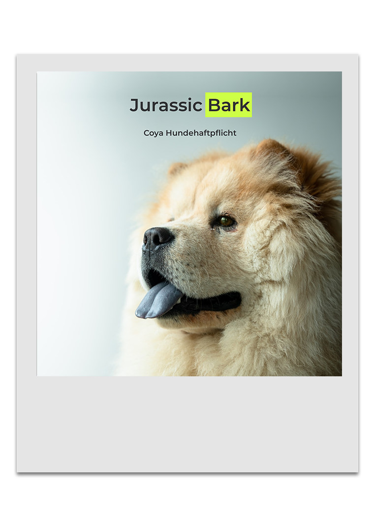Coya Hundehaftplflicht - Jurassic Bark