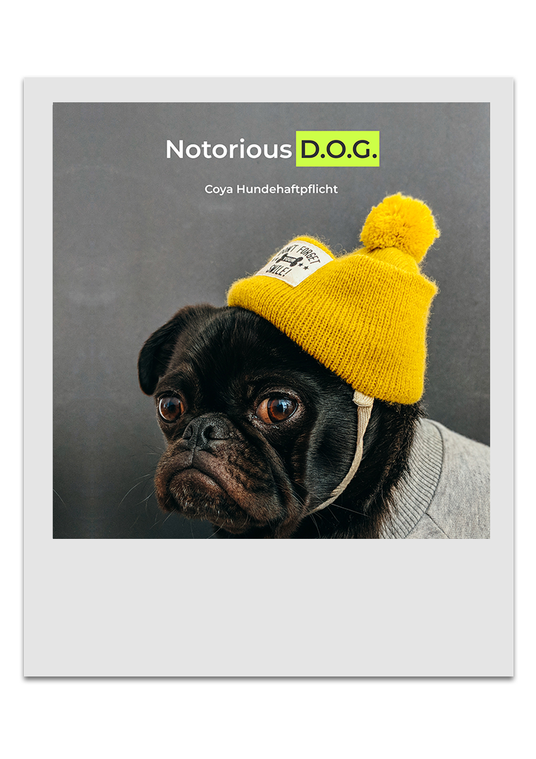 Coya Hundehaftplflicht - Notorious D.O.G.
